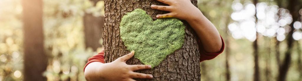 Ein Kind umarmt einen Baum